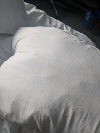 The Westin Lombard Yorktown Center: Stains on bedding and pillows