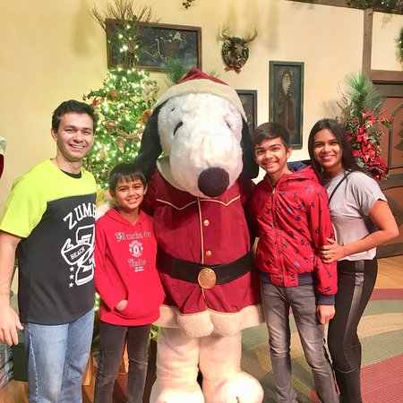 Knott's Berry Farm: Great day out with the family