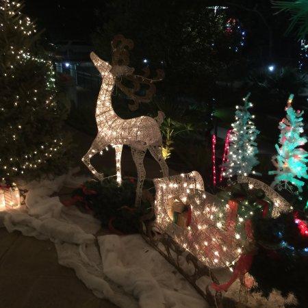 Wyndham Garden San Antonio Riverwalk/Museum Reach: photo0.jpg