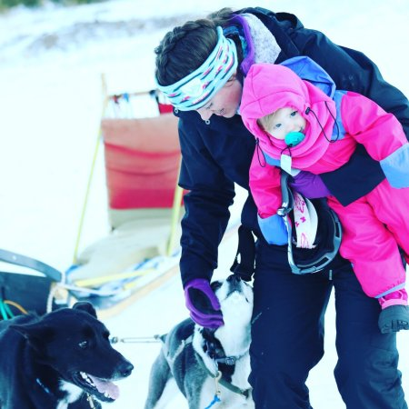 Dog Sled Rides of Winter Park (Fraser) - 2018 All You Need ...
