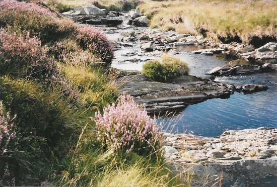Caersws, UK: A hiking scene in the area around Lake Vyrnwy/Llyn Efyrnwy (a reservoir that supplies Liverpool)