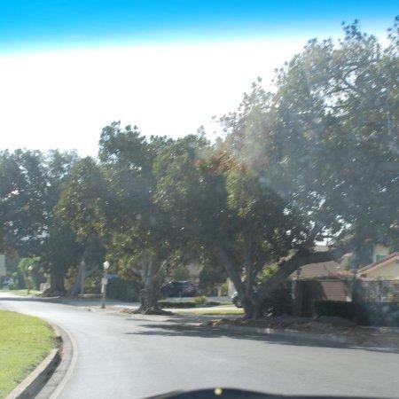 Griffith Park: photo4.jpg