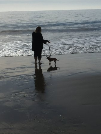 Aptos, CA: Lovely walk on the beach with dog on leash.