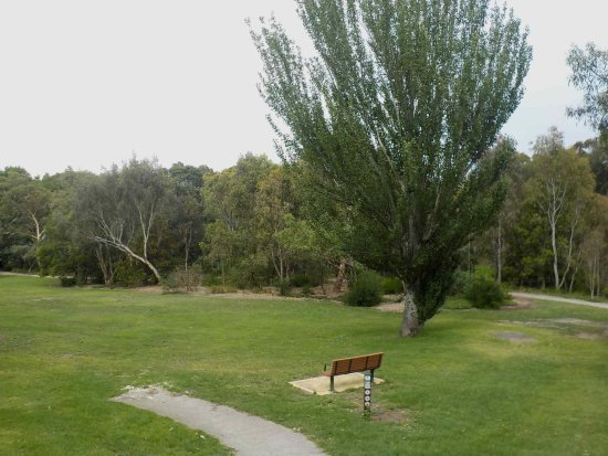 Hawthorn, Australia: Trail to right, open space and seating