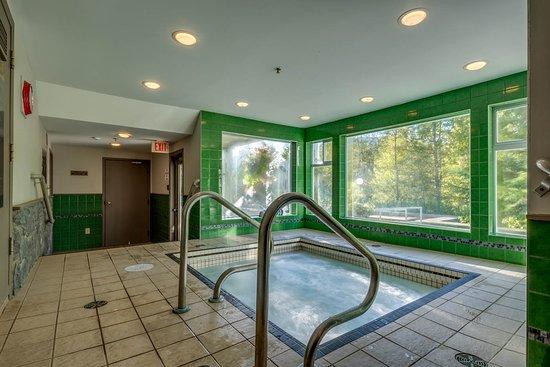 Greystone Lodge : Indoor Hot Tub