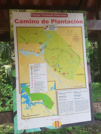 Soberania National Park: Plantation Trail