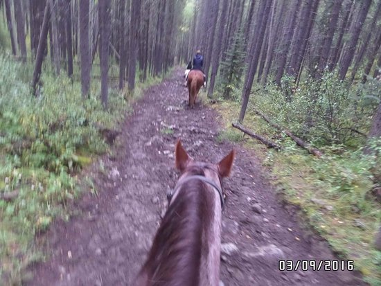 Fairmont Banff Springs: received_1586777194949756_large.jpg