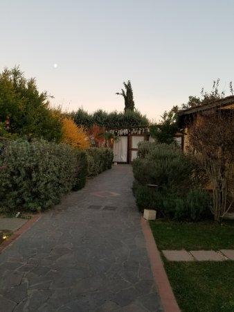Ulignano, Italia: Grounds