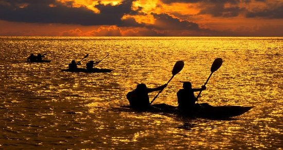 Gulfport, FL: Tampa Bay Beach Kayak Rentals