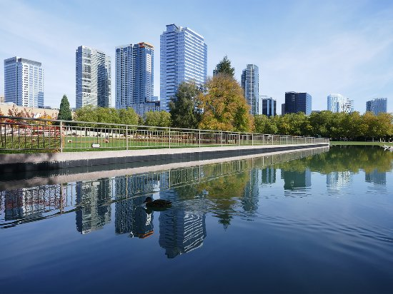 Bellevue's growing skyline viewed from Bellevue Downtown Park - Photo provided by Visit Bellevue