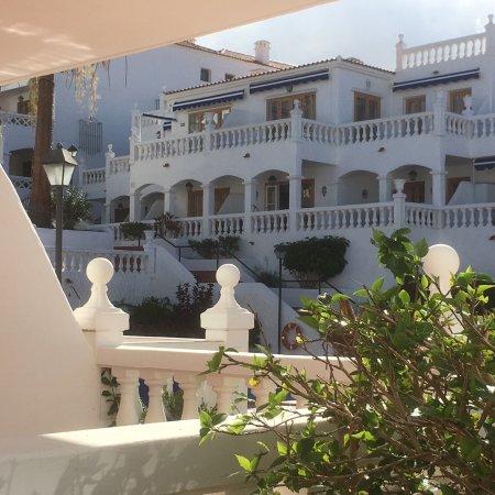 Royal Palm Apartments : photo1.jpg