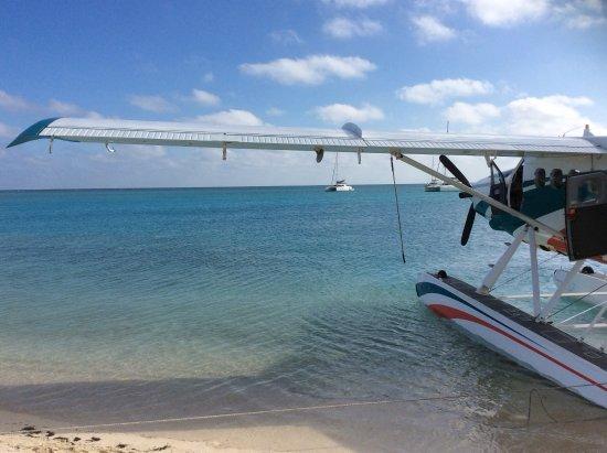 Key West Seaplane Adventures: Seaplane waiting to depart