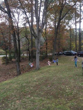 Georgia Veterans Memorial State Park Camping Updated