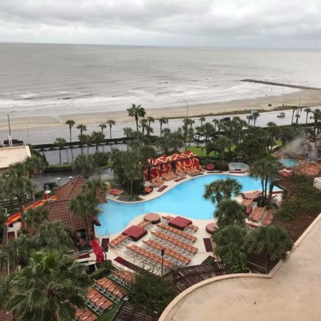 picture of the san luis resort galveston tripadvisor. Black Bedroom Furniture Sets. Home Design Ideas
