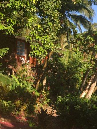 Jinetes de Osa Hotel: Chambre avec vue sur la mer