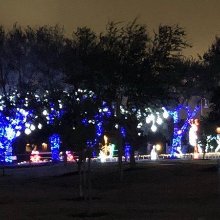 Moody Gardens Christmas.Photo4 Jpg Picture Of Moody Gardens Galveston Tripadvisor