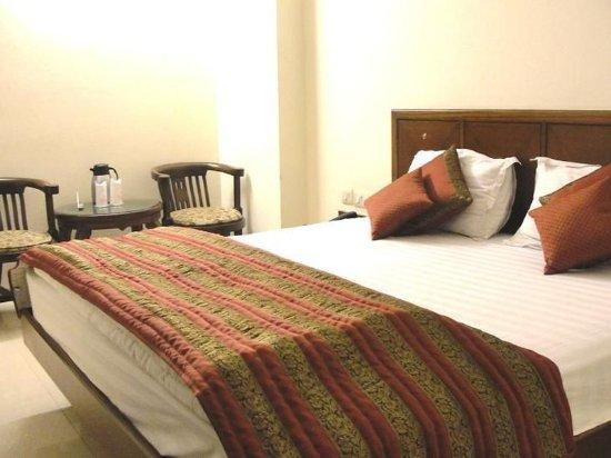 Hotel Chanchal Deluxe: Guest room