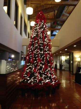 Shula's Hotel & Golf Club: Lobby during holidays