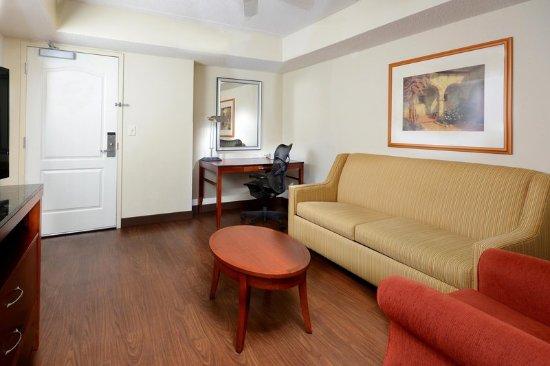 Hilton Garden Inn Greensboro: Suite