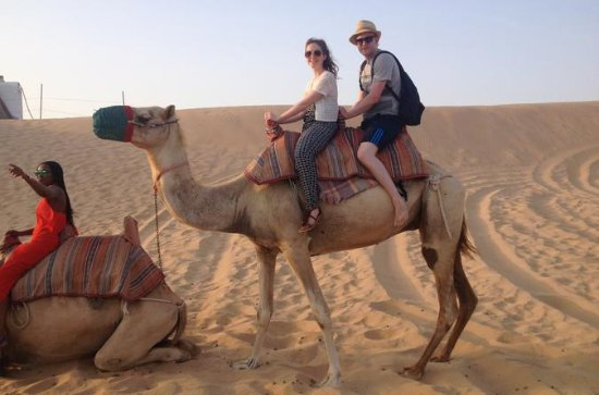 Desert Safari from Abu Dhabi with 4x4, Camel Ride, and Dinner