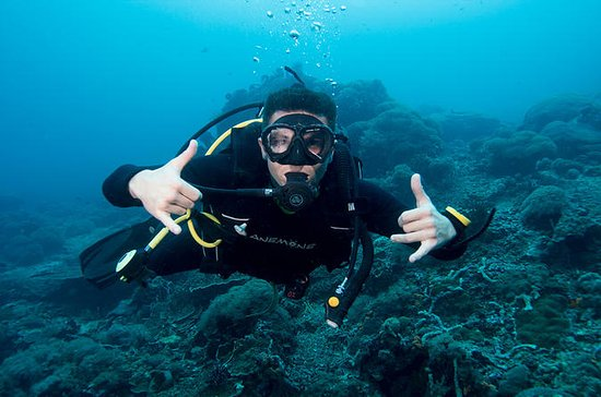 3 Day PADI Open Water Dive Course in...