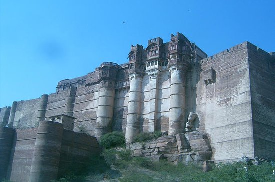 Private Full-Day Tour to Bishnoi...