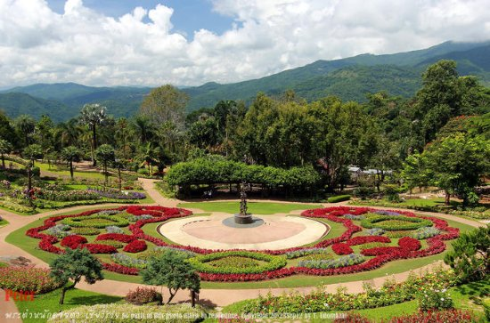 1 Day Car Tour 4: Visit Doi Tung