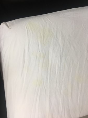 Motel 6 Townsend: Wrinkly bed sheet with big yellow stains