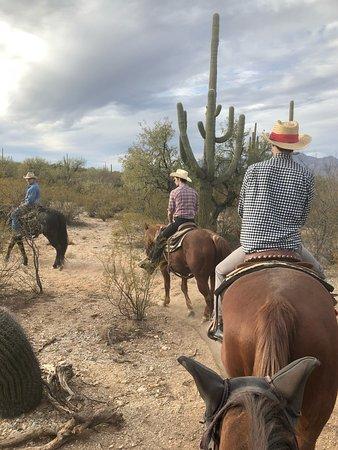 Houston's Horseback Riding : photo1.jpg