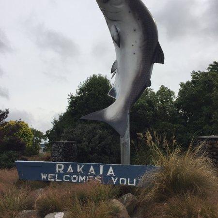 Rakaia, Yeni Zelanda: BIG Salmon