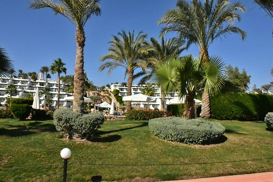 Hilton Sharm Waterfalls Resort Photo