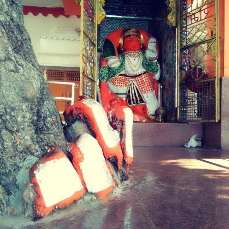 Walk and Pedal Travel Tours: varied temples and shrines