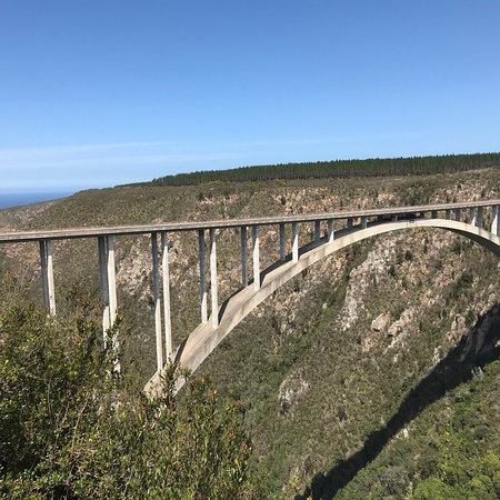 Garden Route (Tsitsikamma, Knysna, Wilderness) National Park: photo3.jpg