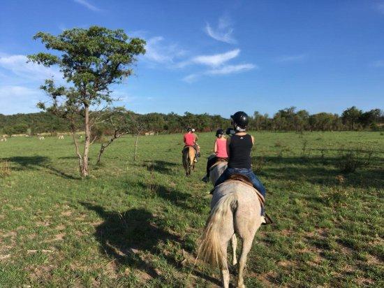 Mabula Private Game Reserve, África do Sul: IMG-20171225-WA0008_large.jpg
