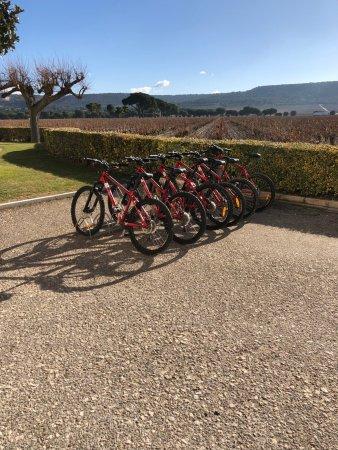 Sardon de Duero, Espanha: para recorrer las rutas del vino
