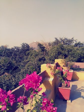 Devra Udaipur : Views from the terrace