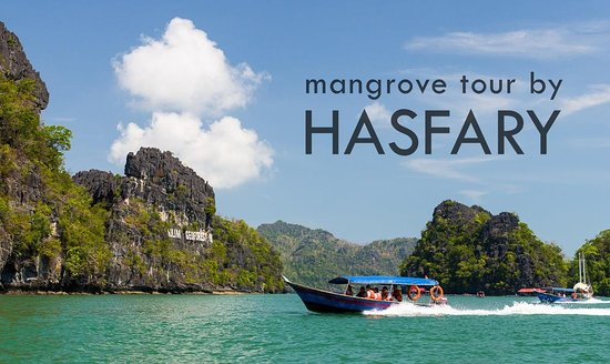 ‪Langkawi Mangrove Tour by Hasfary Travel & Tours‬