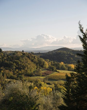 Al Gelso Bianco Farm-Holiday Resort: View from the resort