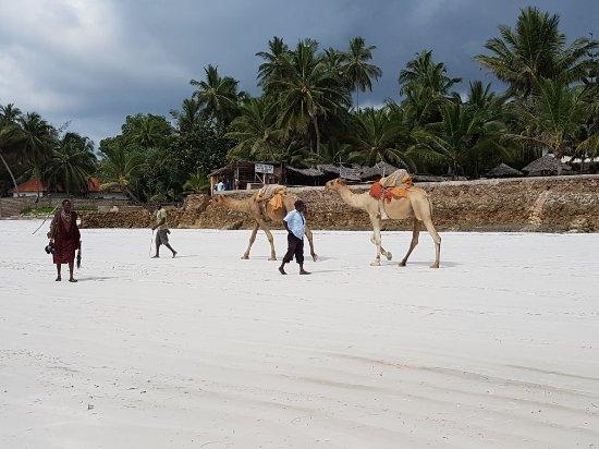 Galu Beach, Kenia: 20171207_094102_large.jpg