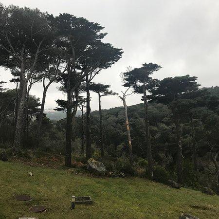 Linho, Portugal: photo9.jpg