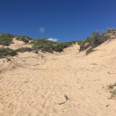 St. Andrews Beach, Australia: photo1.jpg