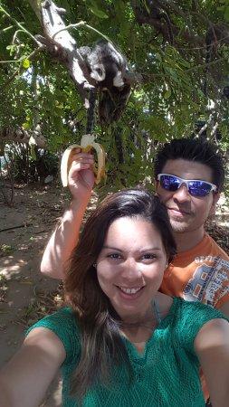 Santuario Ecologico de Pipa: los monitos comiendo banana