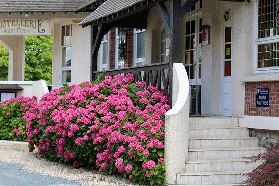 Saint-Pierre-du-Vauvray, France: Couleurs d'été