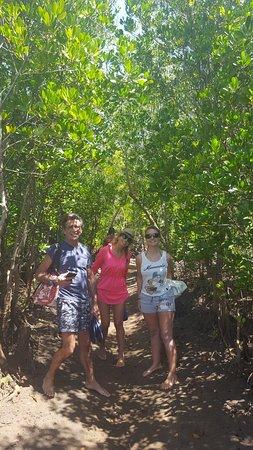 Safari Kenya Top - Private Day Tours: passaggio tra le mangrovie