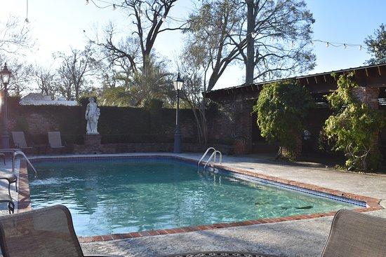 Nottoway Plantation Resort: The pool (photo taken during winter)