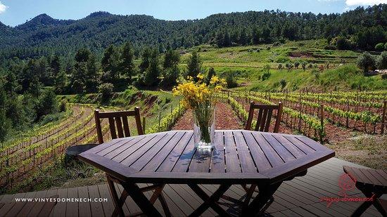 Capcanes, Espagne : la terraza