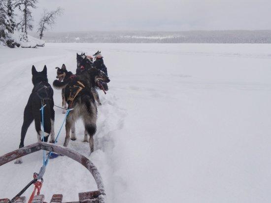 Undersaker, Sweden: DSC00917-01_large.jpg