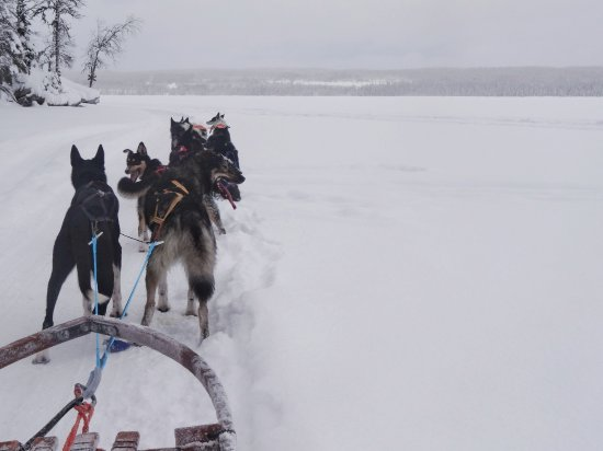 Undersaker, Σουηδία: DSC00917-01_large.jpg