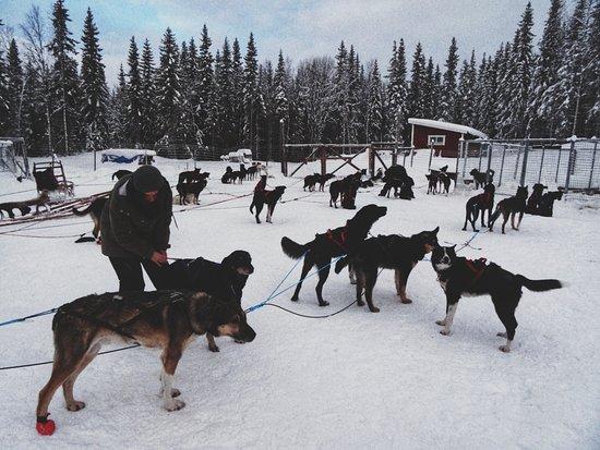 Undersaker, Sweden: DSC00900-01_large.jpg