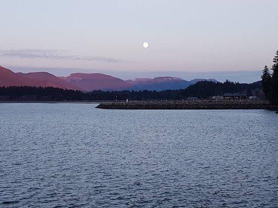 Port Renfrew, Kanada: View from the dock